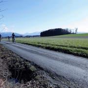 Im Gebiet Hatwil-Hubletzen soll Kies abgebaut werden. Ein Gutachten zeigt erhebliche Risiken auf. (Bild: Werner Schelbert, Cham, 14. März 2018)