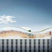 So sehen erste Visualisierungen des Saals auf dem Businesspark Aentlebuch aus. (Visualisierung: PD)