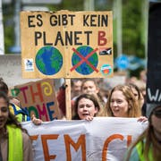 Die Demonstranten ziehen mit ihren Plakaten und Spruchbändern vom Kreuzlinger Hafen nach Konstanz. (Bild: Reto Martin)