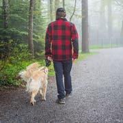 In Wil müssen Hunde im Wald oder am Waldrand nicht mehr an die Leine. (Symbolbild: Andrea Stalder)
