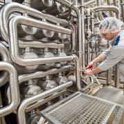 Gemeinden mit einer starken Wirtschaft verlieren durch die Senkung der Gewinnsteuern am meisten: Hochdorf Swiss Nutrition AG, Sulgen. (Bilder: Reto Martin)