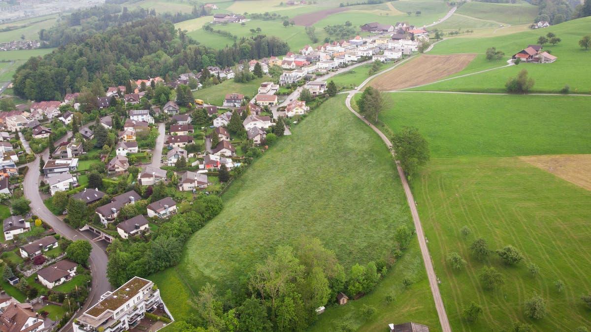 Stadtrat Werden