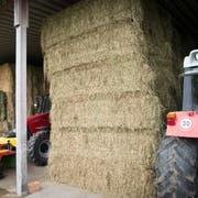 Heiss begehrte Ware: Betriebe mit vollem Heustock können das Futter zurzeit zu überteuerten Preisen verkaufen. (Bild: Ralph Ribi)