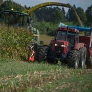 Toni Krummenacher ist Landwirt Lohn - und Kranarbeiter während der Maisernte drescht er 20 Hektaren Mais por Tag und ca 200 Hektaren im Jahr.Fotografiert am 6. Oktober 2016 in Sempach( Nadia Schärli / Neue Luzernerzeitung )