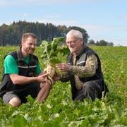 Martin und Anton Waelti erwarten eine durchschnittliche Ernte. Schweizweit wird sie aber wohl geringer ausfallen. (Bild: Donato Caspari)