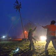 Helfer stellen in Dunkelheit und Schneetreiben die Tanne auf. (Bild: Mario Testa)