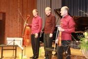 Die drei Musiker des Feininger Trios: David Riniker (Violoncello), Adrian Oetiker (Klavier), Christoph Streuli (Violine), von links. (Bild: Peter Küpfer)