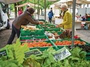Der Wochenmarkt in Frauenfeld. (Bild: Andrea Stalder)