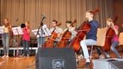 Kammermusik mit dem Streichensemble unter der Leitung von Regula von Tószeghi.(Bild: Trudi Krieg)