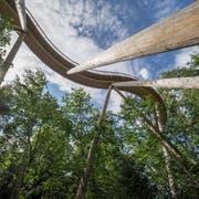 Der erste Baumwipfelpfad der Schweiz im Neckertal im Kanton St. Gallen wurde im Mai eröffnet. (Bild: Hanspeter Schiess, 28. August 2018)