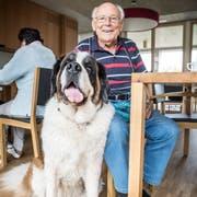Hermann Bresch mit Therapiehündin Aveline im Pflegehiem Sonnhalden in Arbon. (Bild: Andrea Stalder)