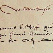 Wildenhuser Lehen 1541: «Item Hanns Bischoff gnant Holzman uff dem Maß (Moos) hatt zu sinen Hannden empfangen sin grechtig keit in der Alp Lowi (Laui).» (Bild: PD)