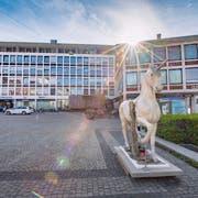 Die künftige Bibliothek im «Union» könnte laut Stadtpräsident Thomas Scheitlin ein Wahrzeichen an der Nexpo sein. (Bild: Urs Bucher (7.Mai 2019))