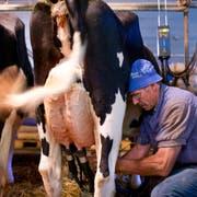Ein Berner Milchbauer bei der Arbeit. (Bild: Martin Ruetschi/Keystone)