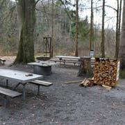 Idylle pur: So sieht die öffentliche Grillstelle Rosental aus, wenn sie von Werkhofmitarbeitern gesäubert worden ist. (Bild: Hans Suter)