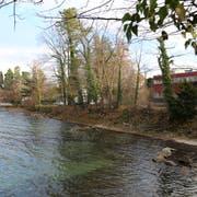 Soll eine Aufschüttung mit Fussweg gebaut werden oder bleibt das Ufer am Neuseeland, wie es ist? Die Meinungen in der Bevölkerung gehen auseinander. Abgestimmt wird am 10. Februar. (Bild: Jolanda Riedener)