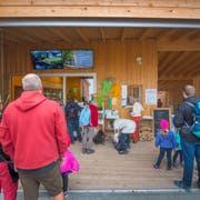 Auch bei Nebel zieht es viele Touristen zum Baumwipfelpfad in Mogelsberg. (Bild: Urs Bucher)