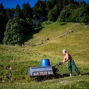 Köbi Alder lenkt eine Motorschubkarre über die Alpwiese zur leeren Kuhtränke. (Bild: Benjamin Manser)