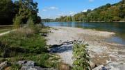 Die Ufermauer soll einem Flachufer weichen, nicht alle sind überzeugt davon. (Bild: PD)