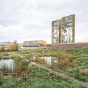Das neu gestaltete Allmend-Areal Ost. Wo früher Parkplätze waren gibt es nun Biotope, Amphibien, Blumen etc. (Bild: Roger Grütter, Luzern, 6.November 2018)