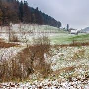 Der Weierweidbach im Tal der Demut soll offen gelegt werden. (Bild: Urs Bucher)