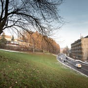 Auf der Wiese an der Demutstrasse im Riethüsli ist ein Alterszentrum mit 27 Wohnungen geplant. Nach jahrelangem Rechtsstreit liegt nun eine Baubewilligung vor. (Bild: Ralph Ribi)