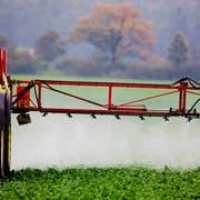 Ein Bauer versprüht Pflanzenschutzmittel auf einem Feld. (Bild: Keystone)