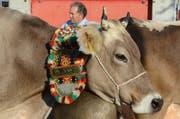 Die Grabser Viehschau ist auch für den 59-Jährigen einer der schönsten Tages des Jahres. (Bild: Jessica Nigg)