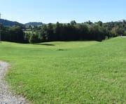 Die Deponie Ritzentaa soll auf dieser Wiese zwischen der Kengelbacherstrasse und dem Dietfurterbach angelegt werden. (Bild: Urs M. Hemm)