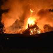 Beim Brand wurden zwei Wohnhäuser sowie ein Stall komplett zerstört. (Bild: Kapo SG)