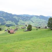 Der Weiler Lutenwil, oberhalb von Nesslau, war im Mittelalter vermutlich ein belebter Durchgangsort auf dem Weg von St.Gallen ins obere Toggenburg. (Bild: Urs M. Hemm)