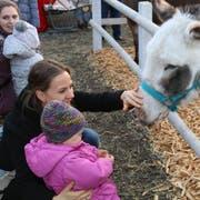 Der Esel lässt nicht nur Kinderherzen höher schlagen.