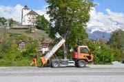 Dieses Mal sind keine übermütigen Autofahrer schuld: Der Kiesplatz am Werdenbergersee wird nach dem Buchser Jahrmarkt wieder hergerichtet. (Bild: Jessica Nigg)