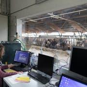 Ein mögliches Forschungsfeld auch für Fachhochschulen: Smartfarming bei Agroscope in Aadorf. (Key/Gaetan Bally)