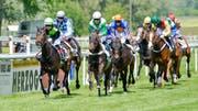 Jockeys und ihre Pferde galoppieren über den Rasen der Rennbahn Grosse Allmend. (Bild Donato Caspari)