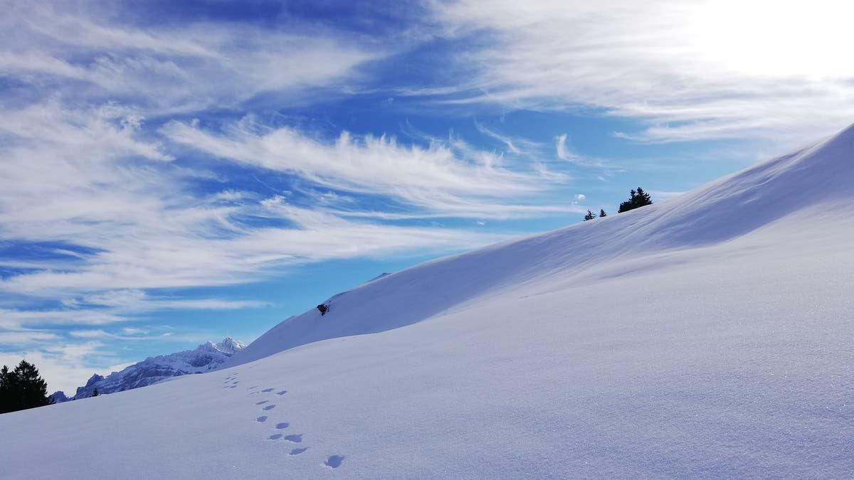 Wandertipp: Mit Schneeschuhen zum Gipfel | St.Galler Tagblatt