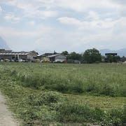 Der Tatort: Auf einem Feldweg «Im Rösle» in Schaan wurde die junge Frau brutal zusammengeschlagen. (Bild: dv)