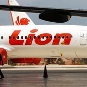 epa07128469 (FILE) - Two indonesian workers walk near Lion Air aircraft at the Batam Aero Technic hangar in the Hang Nadim International Airport, Batam, Riau, Indonesia, 21 November 2014 (reissued 29 October 2018). According to media reports on 29 October 2018, Lion Air flight JT-610 lost contact with air traffic controllers soon after takeoff from Soekarno airport, then crashed into the sea. The flight was en route to Pangkal Pinang, and reportedly had 188 people onboard. EPA/BAGUS INDAHONO