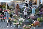 Auf dem St.Galler Samstagsmarkt: Der Stand mit den vielen Blumensträussen ist wieder da! (Bild: Reto Voneschen - 16. März 2019)