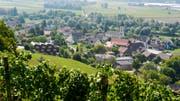 Blick aus den Iselisberger Reben auf Uesslingen. (Bild: Donato Caspari)