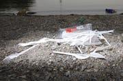 Achtlos liegen gelassenes Plastikbesteck am Zugersee. Symbolbild: Christof Borner-Keller