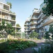 Viel Grün, aber dicht bebaut: So könnte es im geplanten Qube-Quartier dereinst aussehen. (Visualisierung: PD/Migros Luzern)