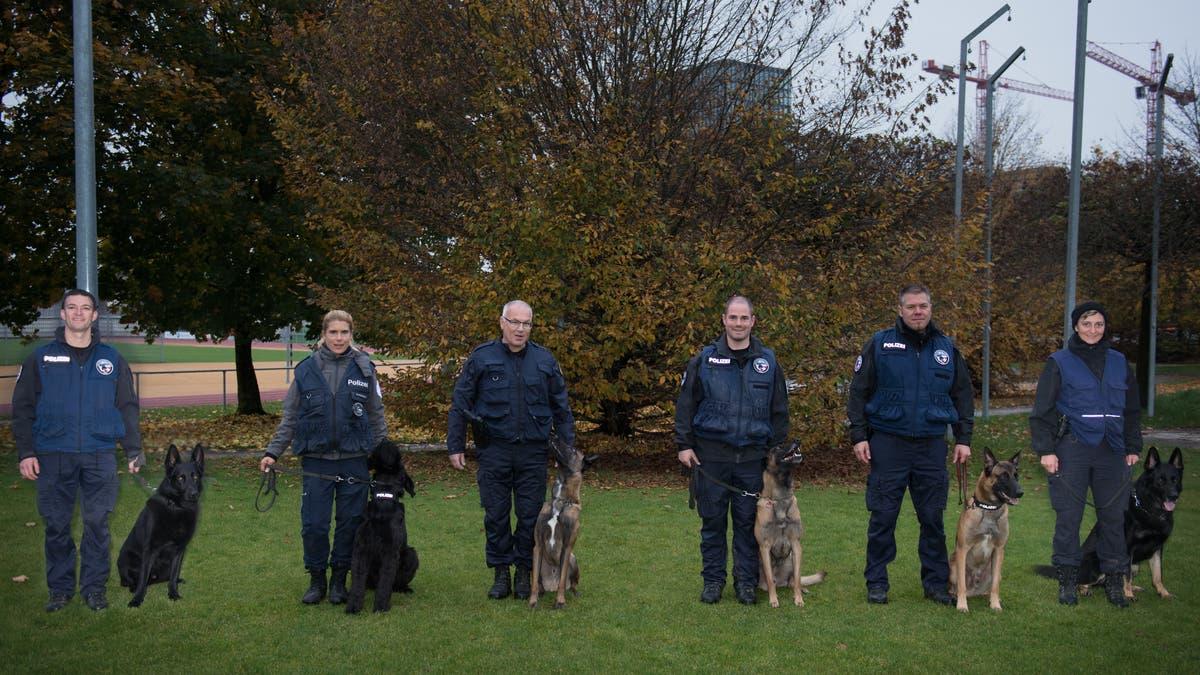 Zuger Polizeihundeprüfung: Elik Ist Der Beste Polizeihund