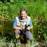 Der Biologe Beat von Wyl inspiziert die von ihm initiierten kleinen Amphibien-Weiher am Wichelsee. (Bilder: Romano Cuonz (Kägiswil, 28. Juli 2018))