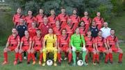 Mit dieser Mannschaft bestreitet Trainer Heris Stefanachi (zweite Reihe, Zweiter von rechts) die Saison 2018/19. (Bild: Beat Lanzendorfer)