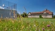Blick vom Sportplatz auf den Frauenfelder Kantialtbau. (Bild: PD/Kantonsschule Frauenfeld)
