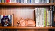 Fachliteratur mit Keramik-Büsi im Büchergestell in der Stube.