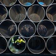 Die Firma Nordstream AG mit Sitz in Zug realisiert Gaspipelines zwischen Russland und Westeuropa (Bild: Keystone / Jens Büttner)