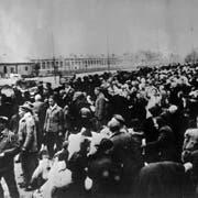 Eine Zugladung von Opfern, deren Endstation Auschwitz sein wird. (Bild: Keystone)