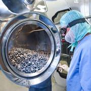 Reinigung von Industrieteilen im Geschäftsbereich «Sealing Solutions» der Firma Dätwyler. (Bild: PD)